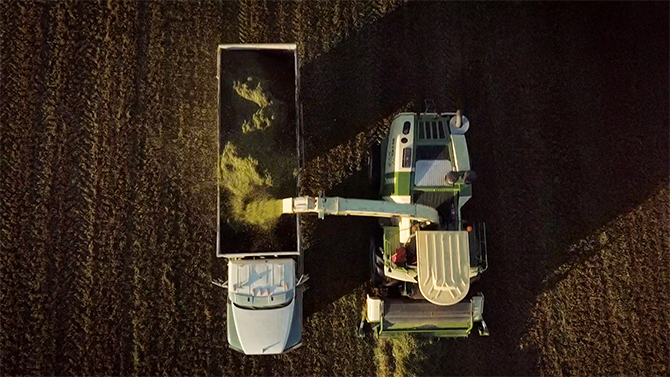 Aerial view of a tractor harvesting crops and spitting the corn into the bed of a nearby truck on Monument Dairy Farm where they produce fresh Vermont milk
